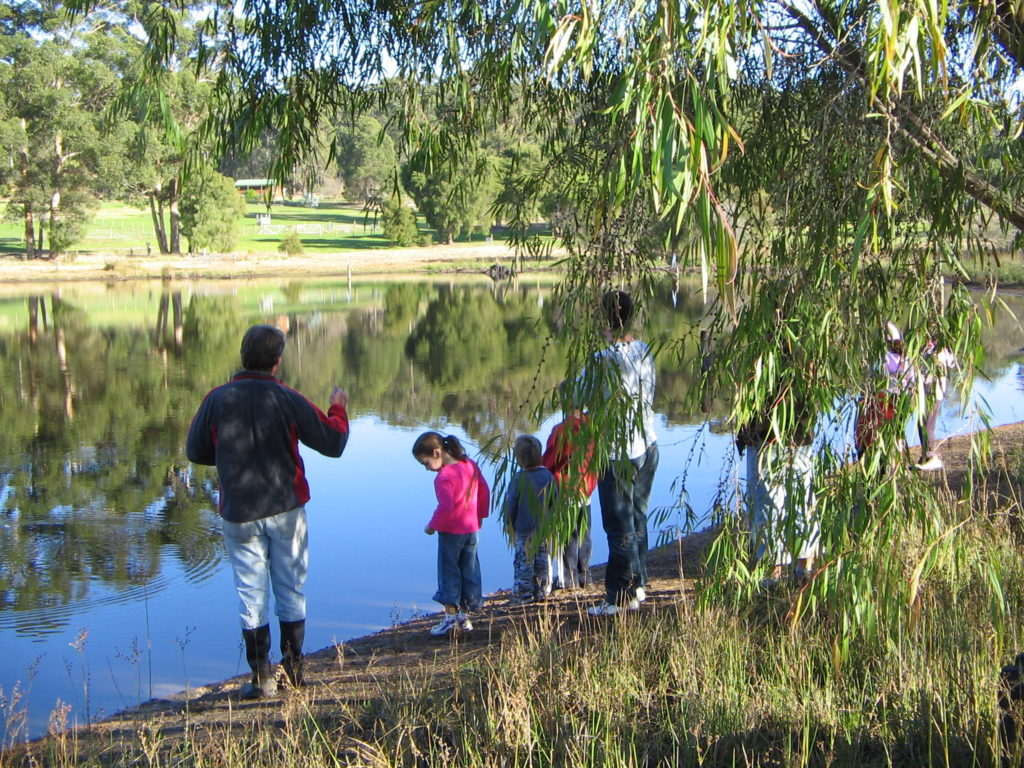 Farm Activities for Kids Fishing for Rainbow Trout