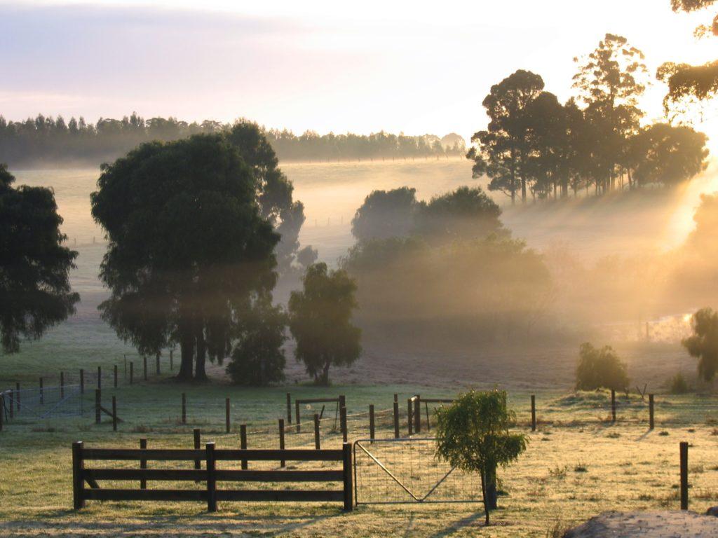 Cancellation Policy Misty Morning Sunrise