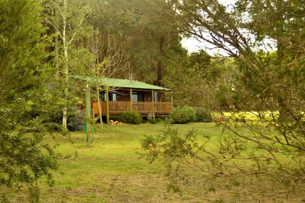 Farmstay in the forest