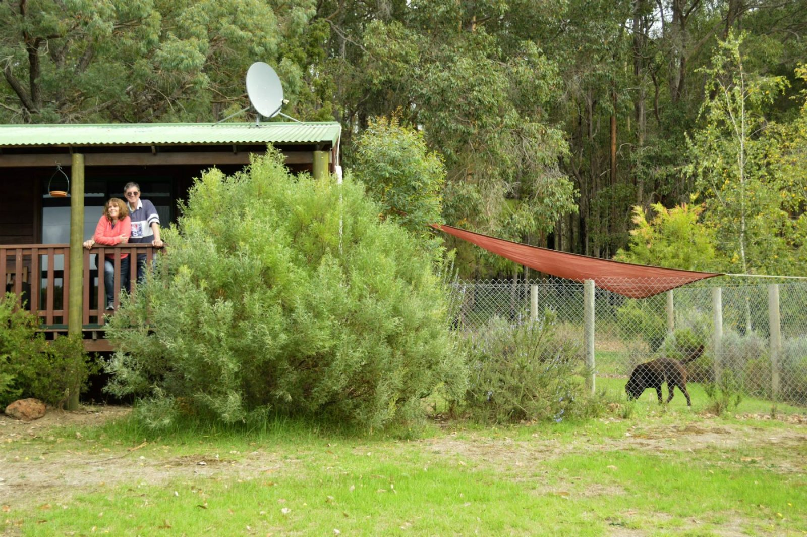 pet friendly farmstay cottages